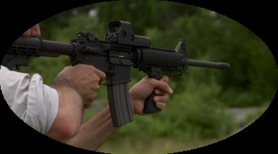 rifle-shooting-stag